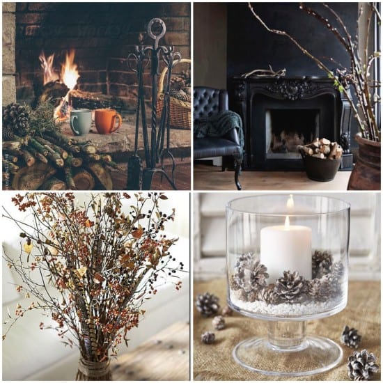 Foraging, autumn, branches, decoration, twigs, pine cones