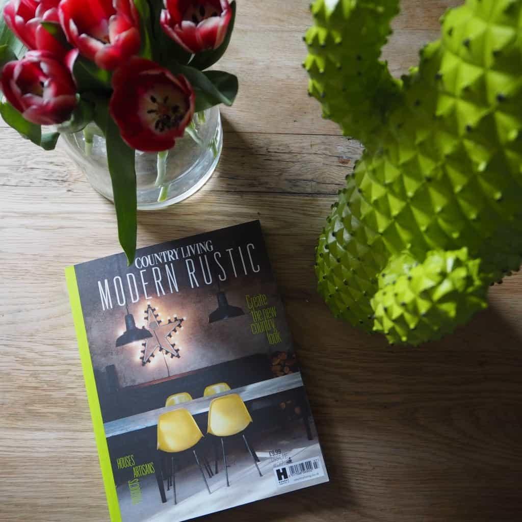 Modern Rustic magazine