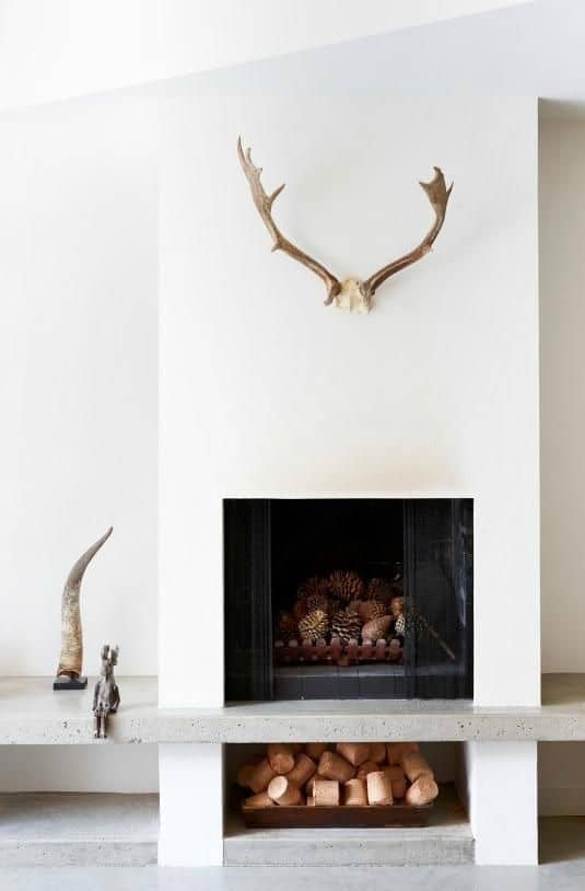 unused fireplace ideas, pine cones