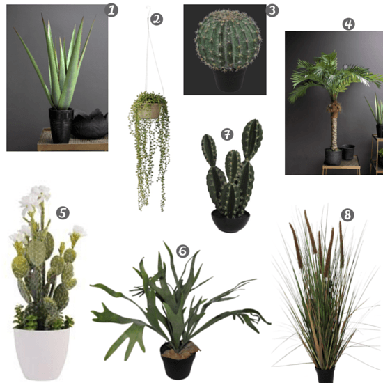 Faux plants, abigail ahern, Rockett st George, ferns, cactus, bulrush