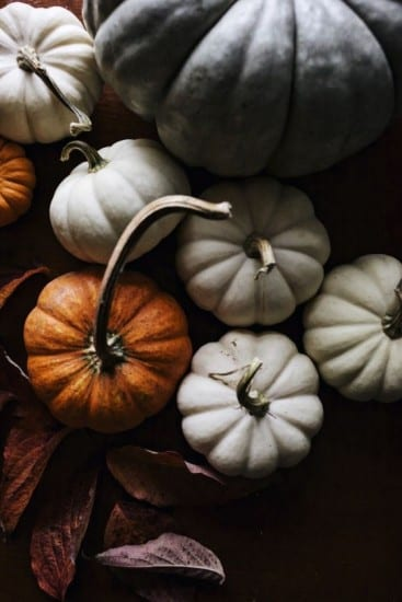 mini pumpkins, autumn decor
