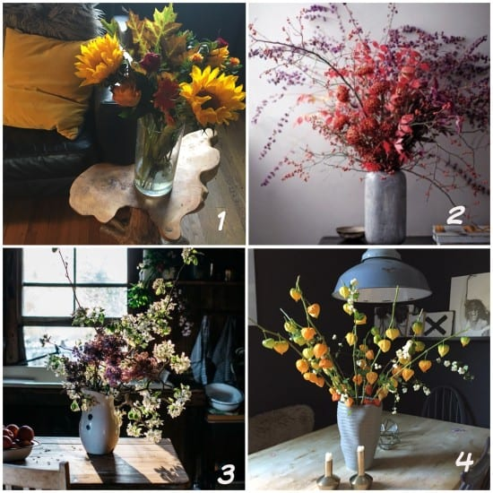 Autumnal flowers, berries, foliage