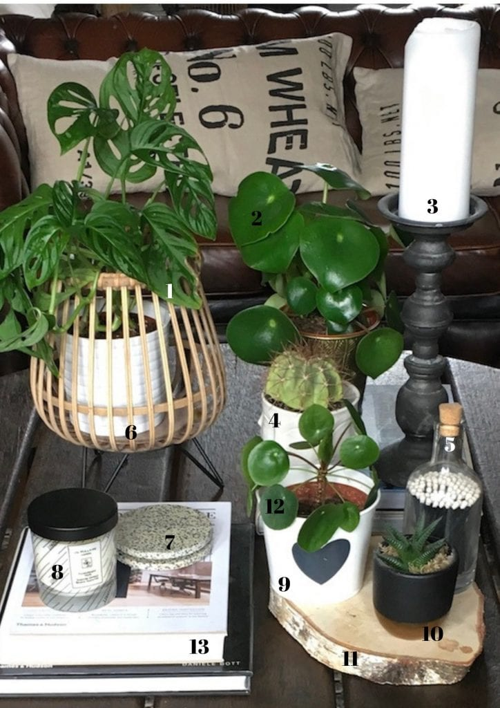 styling a coffee table 3 different ways - plant lovers